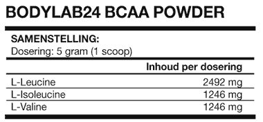 BCAA Powder Bodylab24